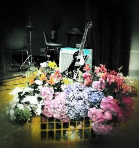 Les fleurs... J'adore les hortensias