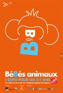 singe-bebes-animaux-portait-480